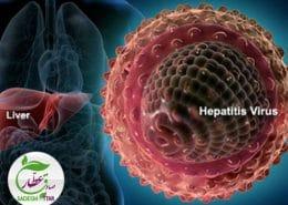 هپاتیت،عوامل،پیشگیری و درمان ها